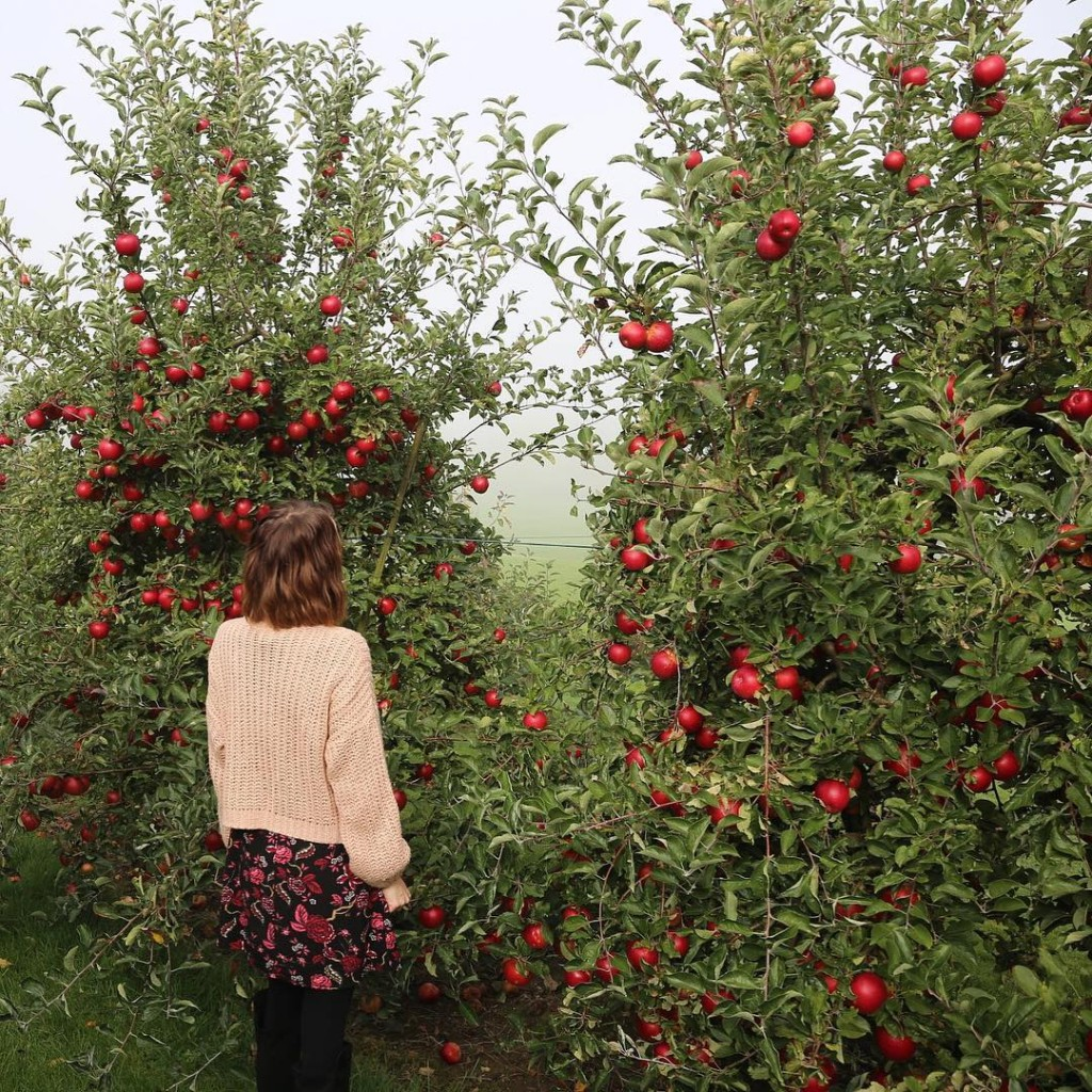 Picking an apple for the bus trip back to Milanhellip